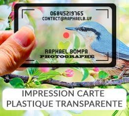 Impression carte plastique pvc transparente personnalisable cardzprinter