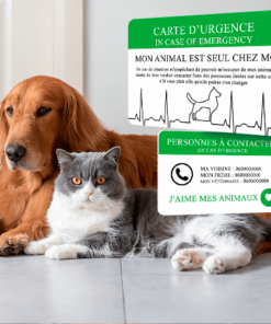 Carte alerte animaux